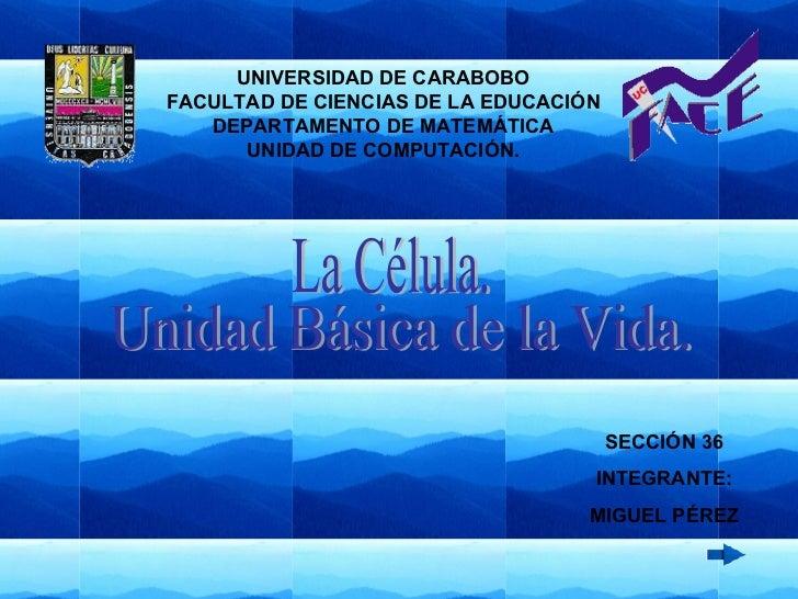 La Célula. Unidad Básica de la Vida. SECCIÓN 36 INTEGRANTE: MIGUEL PÉREZ UNIVERSIDAD DE CARABOBO FACULTAD DE CIENCIAS DE L...
