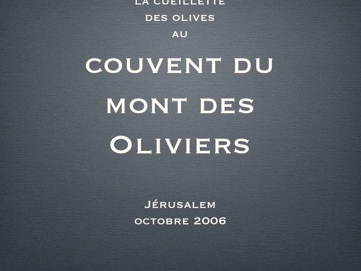 la cueillette des olives au couvent du mont des Oliviers <ul><li>Jérusalem </li></ul><ul><li>octobre 2006 </li></ul>