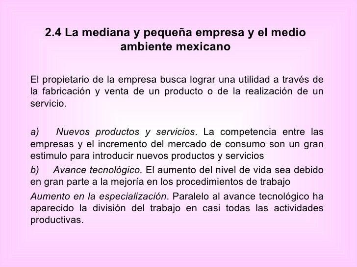 2.4 La mediana y pequeña empresa y el medio ambiente mexicano El propietario de la empresa busca lograr una utilidad a tra...