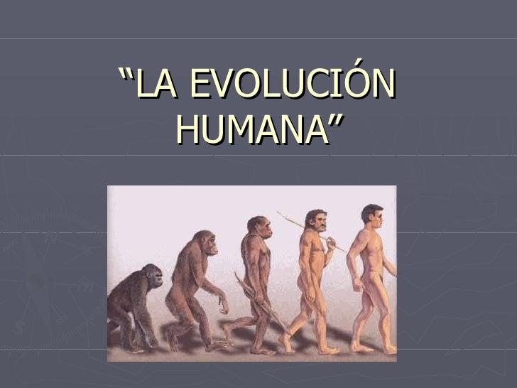 """"""" LA EVOLUCIÓN HUMANA"""""""