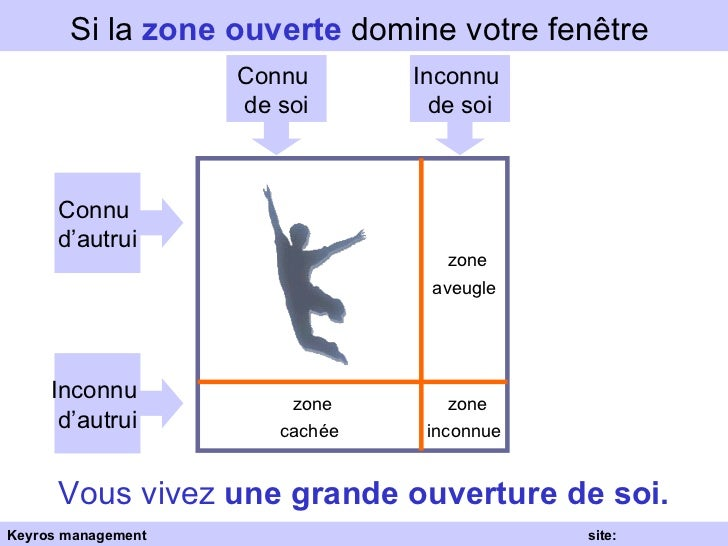 La fen tre de johari for Fenetre zone de qualification