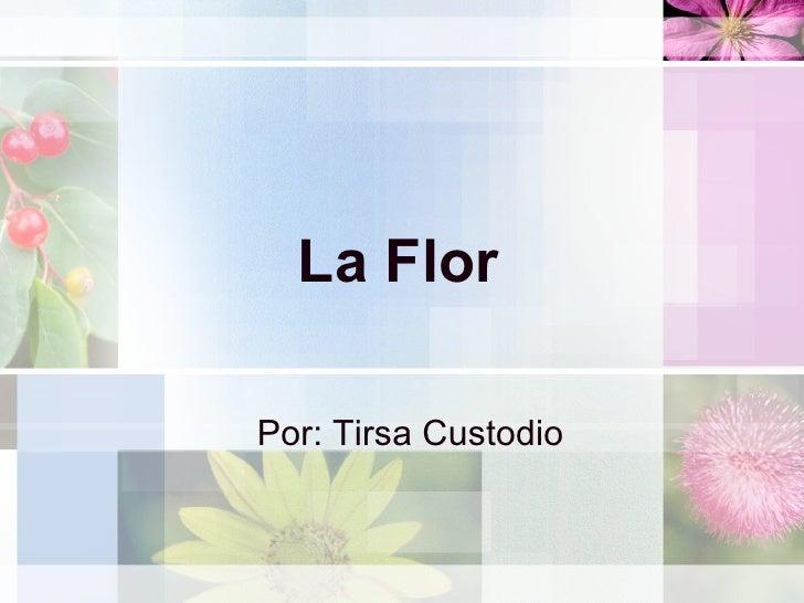 La Flor Por: Tirsa Custodio
