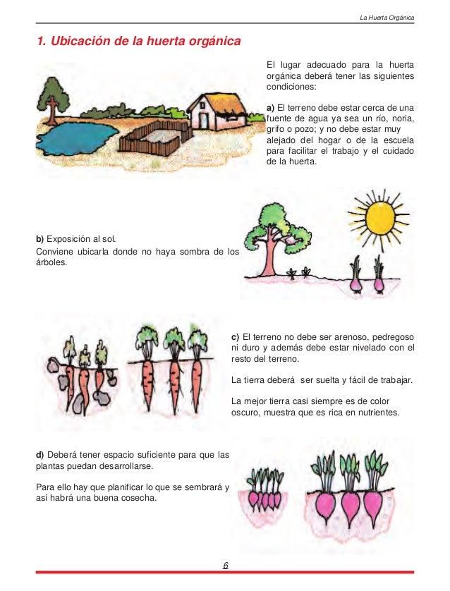 La huerta organica - Preparacion de la tierra para sembrar ...