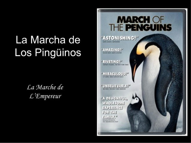 "La Marcha de Los Pingüinos  La marc/ ze ¿[e L Ïmpereur  ""AS7ONISHING! "" 'TXMAZIHG! '  ""E! VETI, HEÉ""  ""li""RA€¡! _.t2'! fi¿""..."