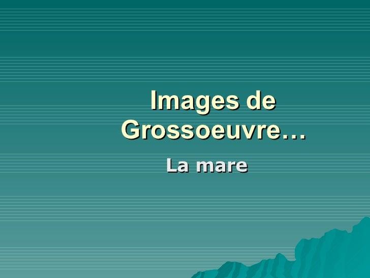 Images de Grossoeuvre… La mare