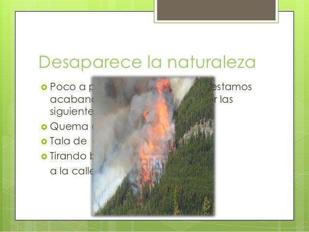 La naturaleza Slide 3