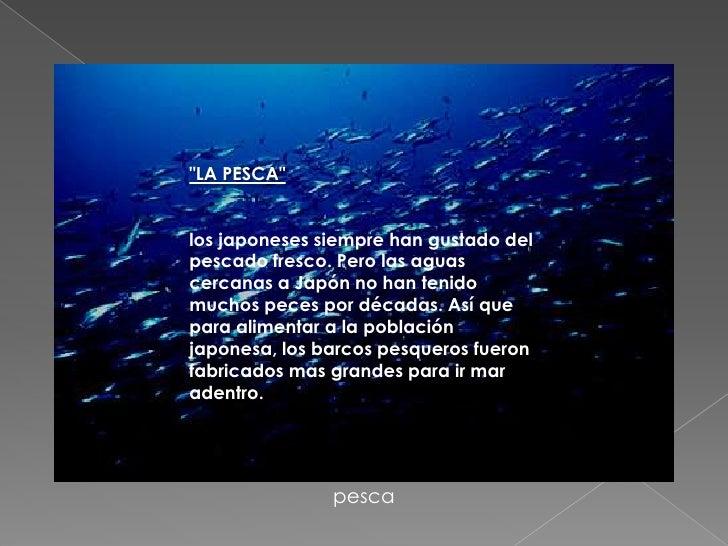 """""""<br />""""LA PESCA""""<br />los japoneses siempre han gustado del pescado fresco. Pero las aguas cercanas a Japón no han tenido..."""
