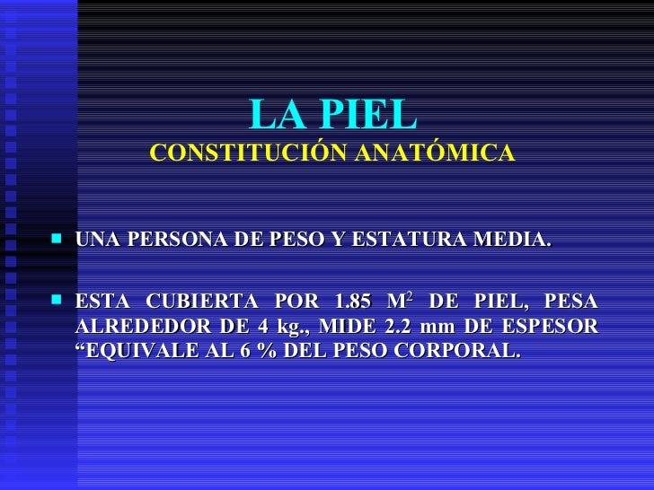 LA PIEL CONSTITUCIÓN ANATÓMICA <ul><li>UNA PERSONA DE PESO Y ESTATURA MEDIA. </li></ul><ul><li>ESTA CUBIERTA POR 1.85 M 2 ...