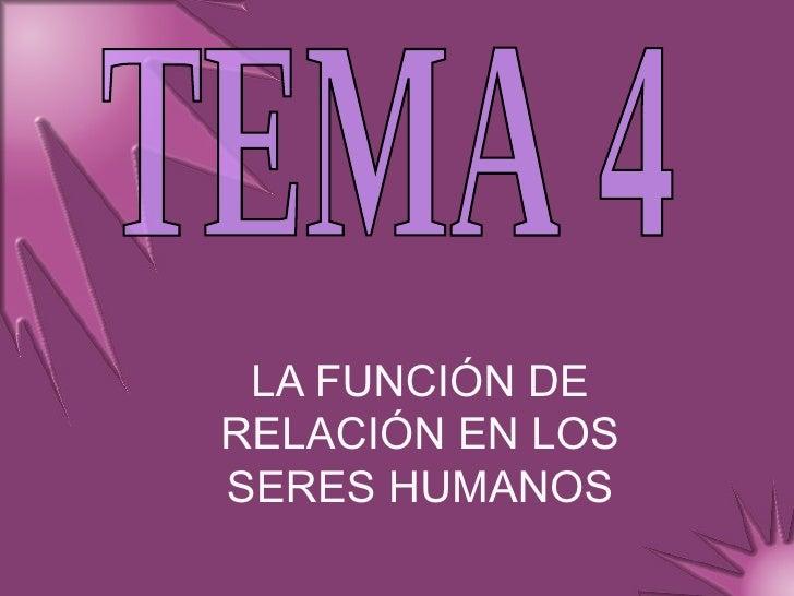 LA FUNCIÓN DE RELACIÓN EN LOS SERES HUMANOS TEMA 4