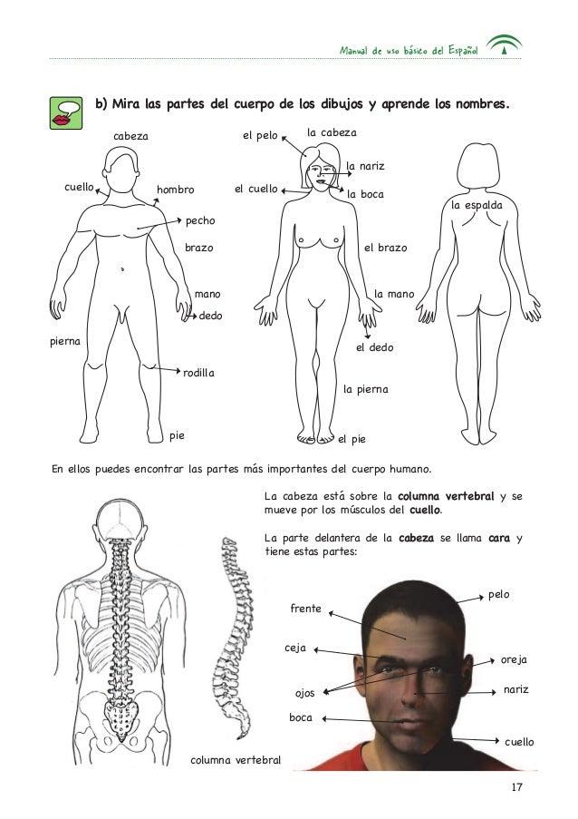La salud-manual cap7