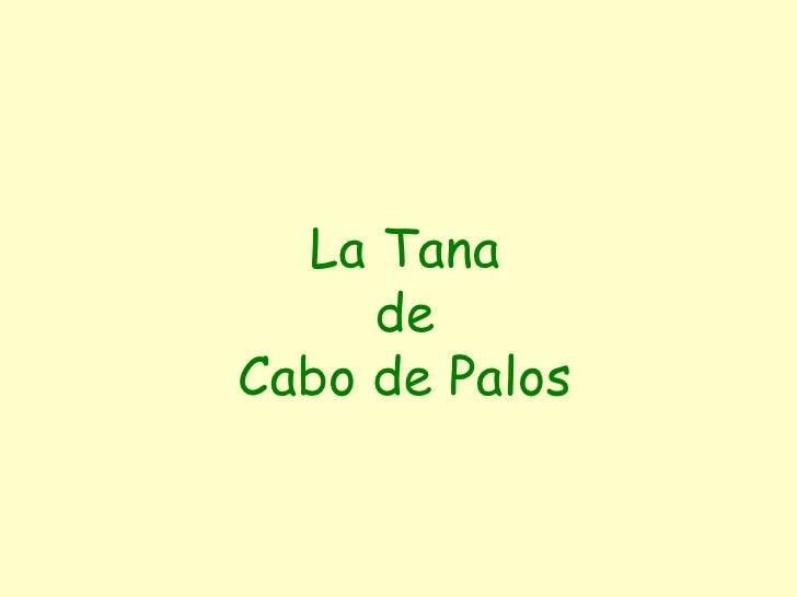 La Tana de Cabo de Palos