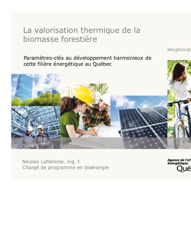 La valorisation thermique de labiomasse forestièreParamètres-clés au développement harmonieux decette filière énergétique ...