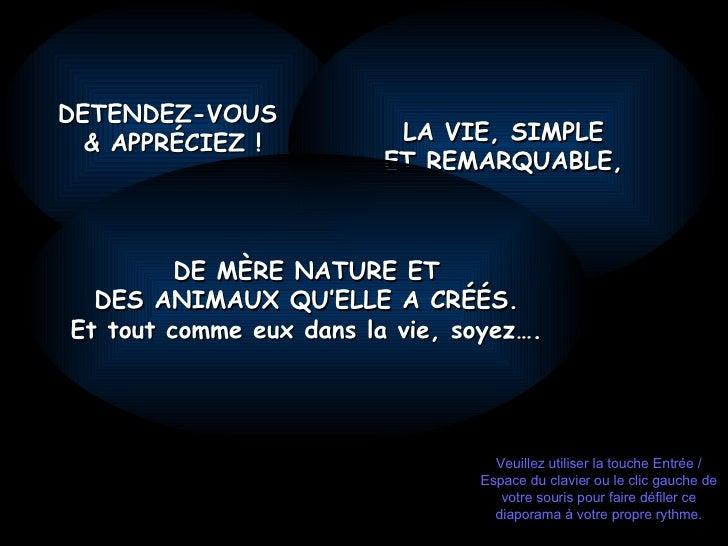 DETENDEZ-VOUS  & APPRÉCIEZ ! LA VIE, SIMPLE ET REMARQUABLE , DE MÈRE NATURE ET DES ANIMAUX QU'ELLE A CRÉÉS. Et tout comme ...