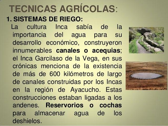 TECNICAS AGRÍCOLAS: 1. SISTEMAS DE RIEGO: La cultura Inca sabía de la importancia del agua para su desarrollo económico, c...