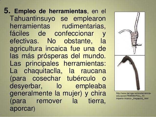 5. Empleo de herramientas, en el Tahuantinsuyo se emplearon herramientas rudimentarias, fáciles de confeccionar y efectiva...