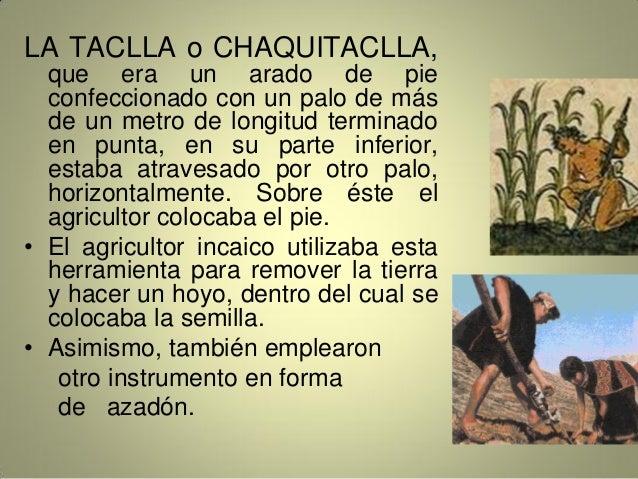 LA TACLLA o CHAQUITACLLA, que era un arado de pie confeccionado con un palo de más de un metro de longitud terminado en pu...