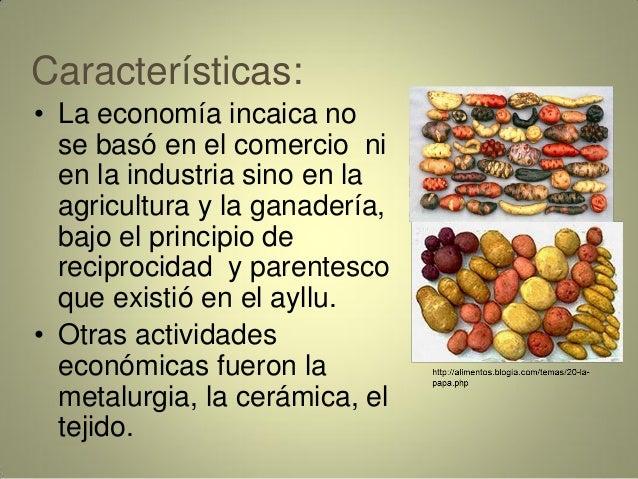 Características: • La economía incaica no se basó en el comercio ni en la industria sino en la agricultura y la ganadería,...