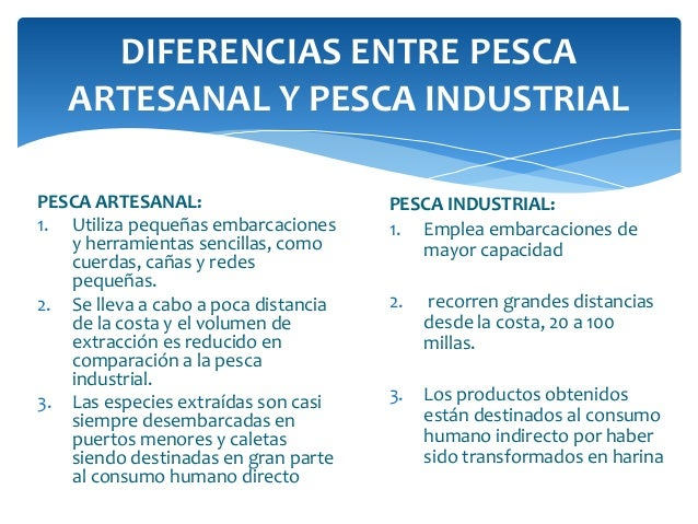 La actividad pesquera artesanal for Diferencia entre licencia de apertura y licencia de actividad