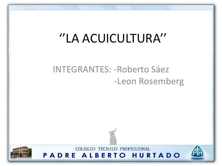 ''LA ACUICULTURA''INTEGRANTES: -Roberto Sáez             -Leon Rosemberg