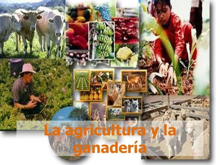 La agricultura y la ganadería<br />