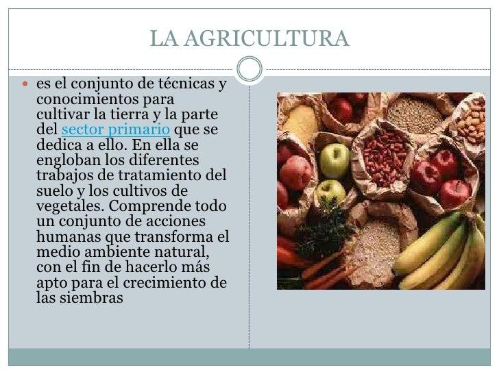 LA AGRICULTURA<br />es el conjunto de técnicas y conocimientos para cultivar la tierra y la parte del sector primario que ...