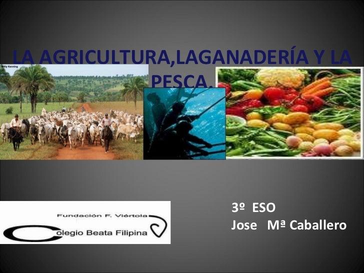 LA AGRICULTURA,LAGANADERÍA Y LA PESCA. 3º  ESO Jose  Mª Caballero