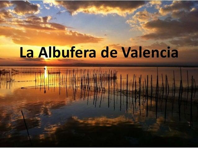 La Albufera de Valencia