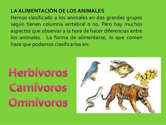 la alimentacion de los animales