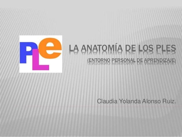 La anatomía de los PLE