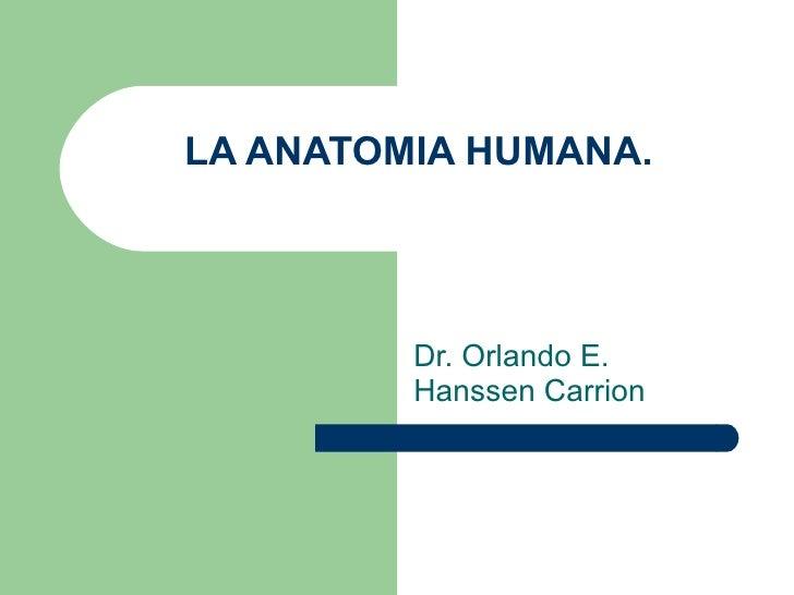 LA ANATOMIA HUMANA. Dr. Orlando E. Hanssen Carrion