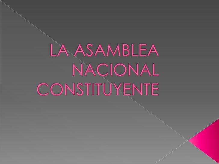 LA ASAMBLEA NACIONALCONSTITUYENTE<br />