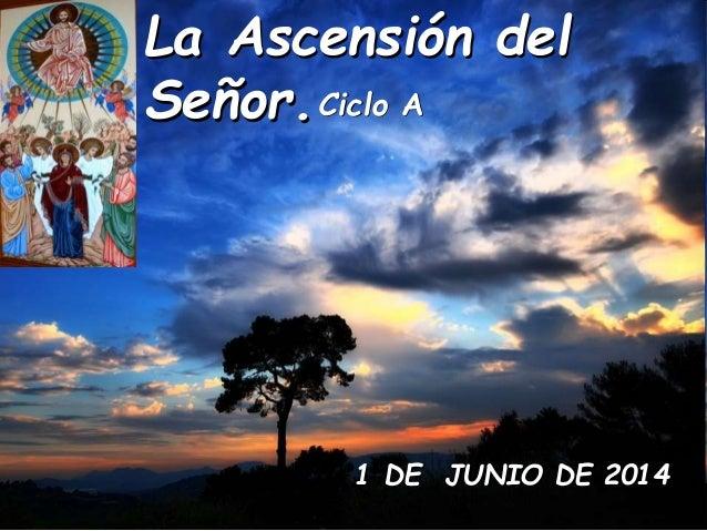 La Ascensión del Señor.Ciclo A 1 DE JUNIO DE 2014