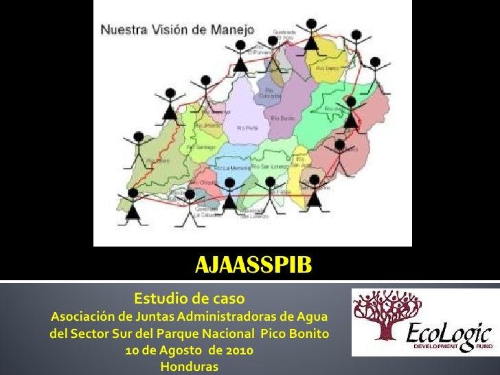 AJAASSPIB             Estudio de casoAsociación de Juntas Administradoras de Aguadel Sector Sur del Parque Nacional Pico B...