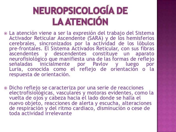    La Corteza Cerebral: registra la sensibilidad consciente compuesta por    material gris. Es una estructura compuesta p...