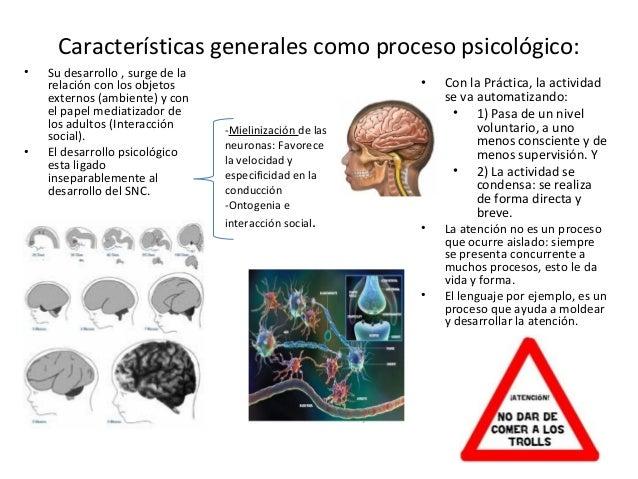 El sistema de la atención coordina varios grupos de               neuronas, que utilizan: