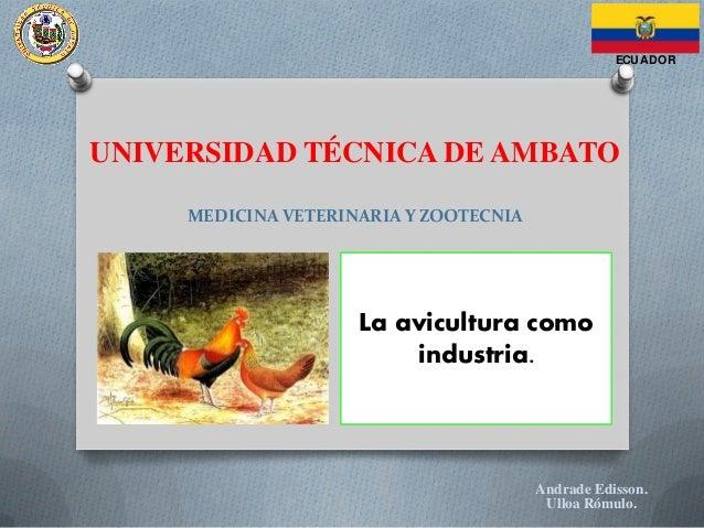 UNIVERSIDAD TÉCNICA DE AMBATO MEDICINA VETERINARIA Y ZOOTECNIA La avicultura como industria. Andrade Edisson. Ulloa Rómulo...
