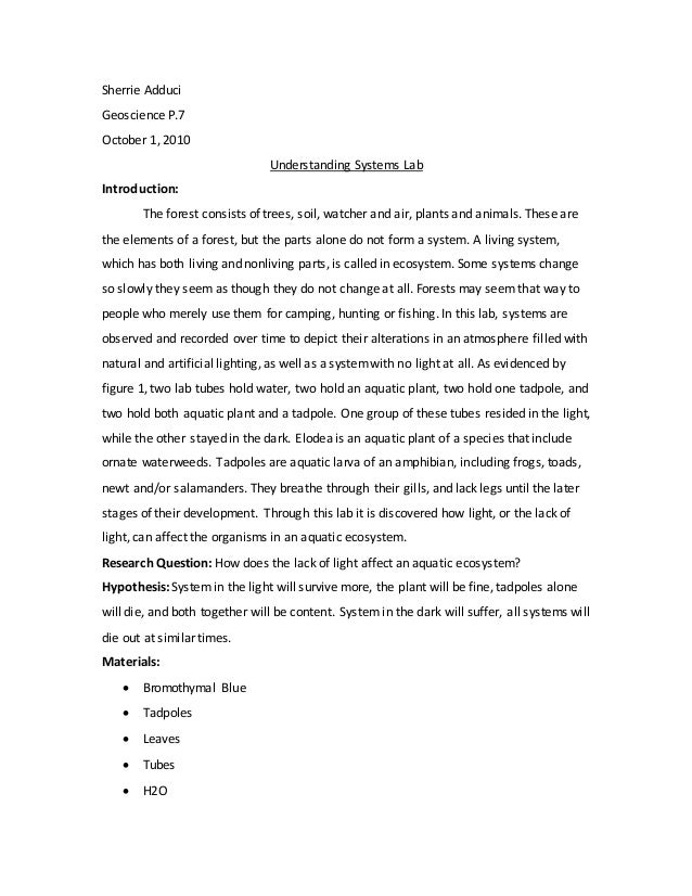 Sherrie Adduci Geoscience P.7 October 1, 2010 Understanding Systems Lab Introduction: The forest consists of trees, soil, ...
