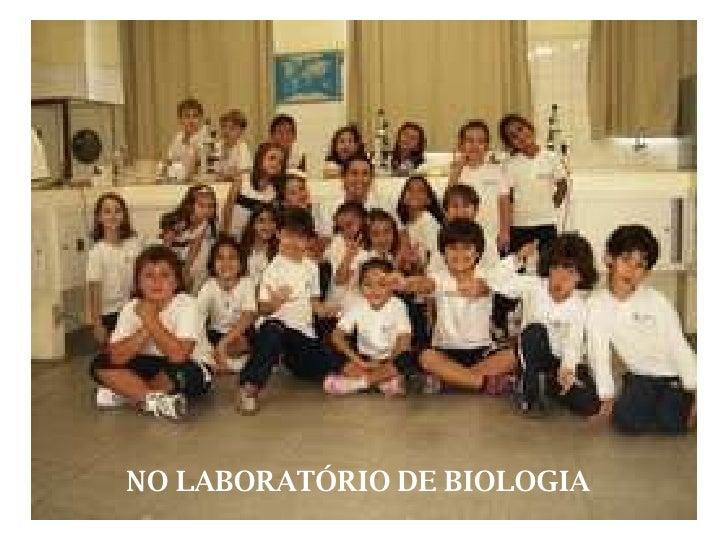 NO LABORATÓRIO DE BIOLOGIA