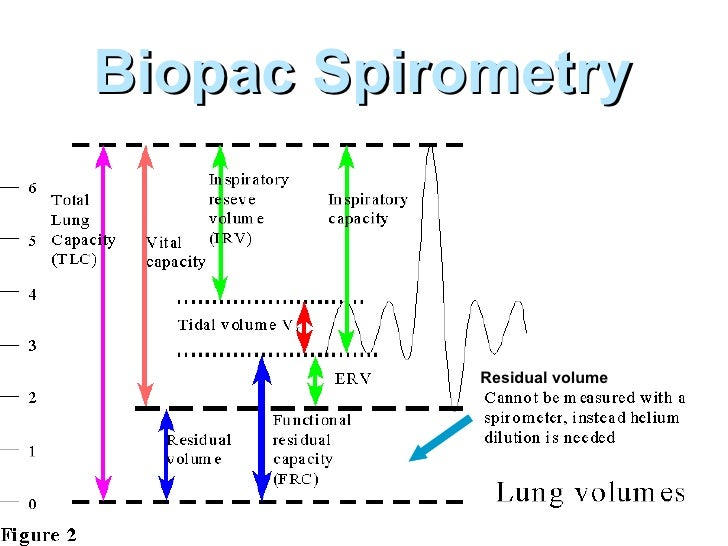 Lung volume spirometer activity 1
