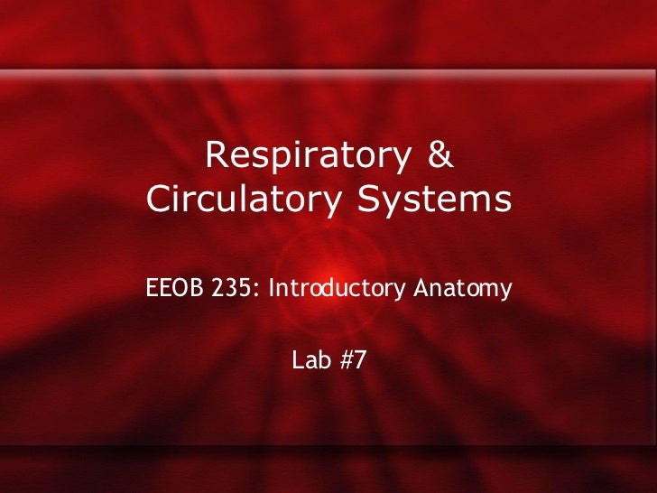 Respiratory & Circulatory Systems EEOB 235: Introductory Anatomy Lab #7