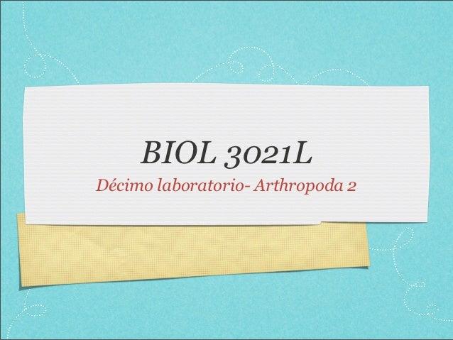 BIOL 3021LDécimo laboratorio- Arthropoda 2