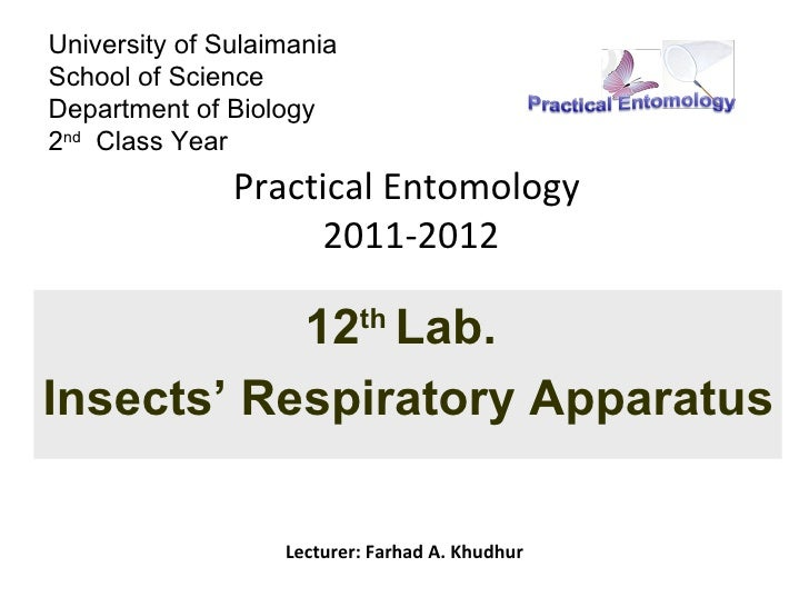 University of SulaimaniaSchool of ScienceDepartment of Biology2nd Class Year               Practical Entomology           ...