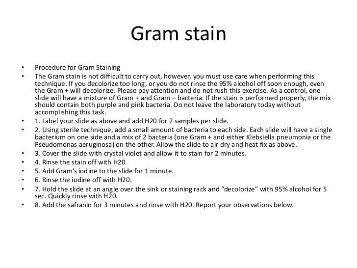 gram stain lab report