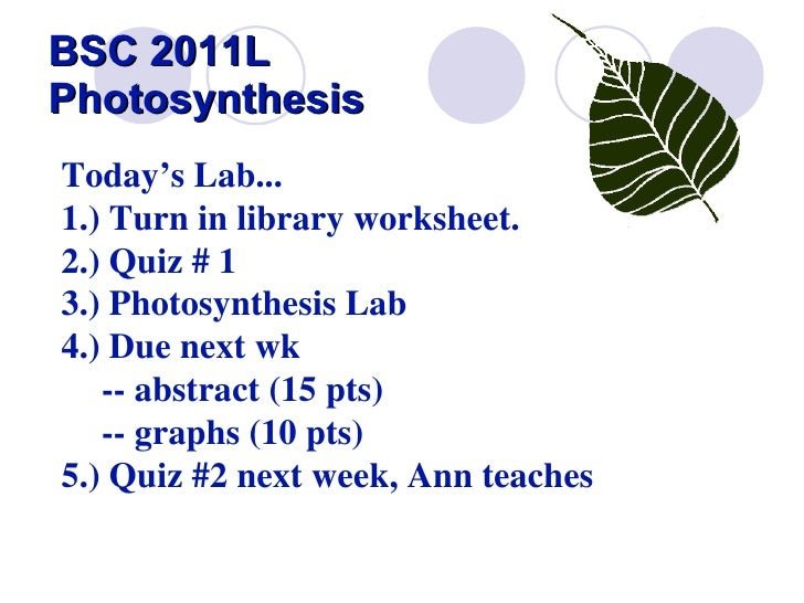BSC 2011L  Photosynthesis Today's Lab... 1.) Turn in library worksheet.   2.) Quiz # 1  3.) Photosynthesis Lab 4.) Due nex...