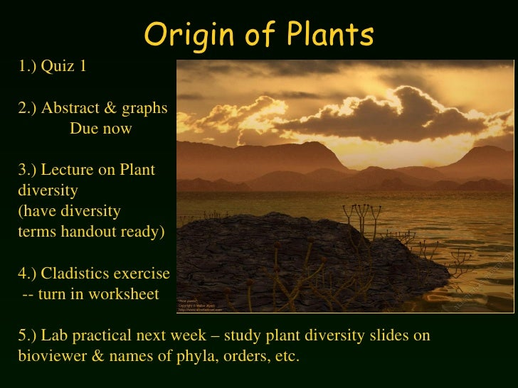 Origin of Plants 1.) Quiz 1 2.) Abstract & graphs  Due now 3.) Lecture on Plant  diversity (have diversity  terms handout ...