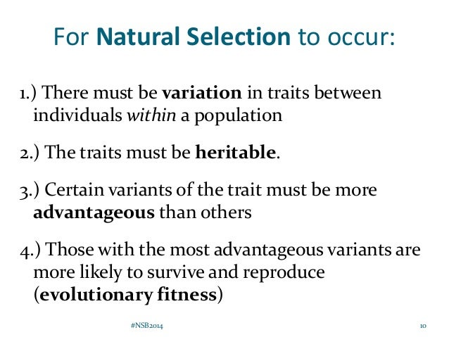 What Does Fitness Mean In Natural Selection