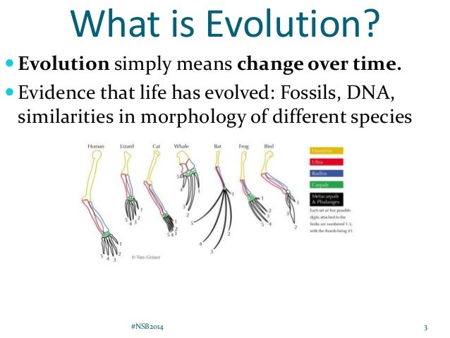Explain The Difference Between Evolution And Natural Selection