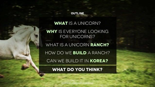 Unicorn Ranch (유니콘 목장) Slide 3