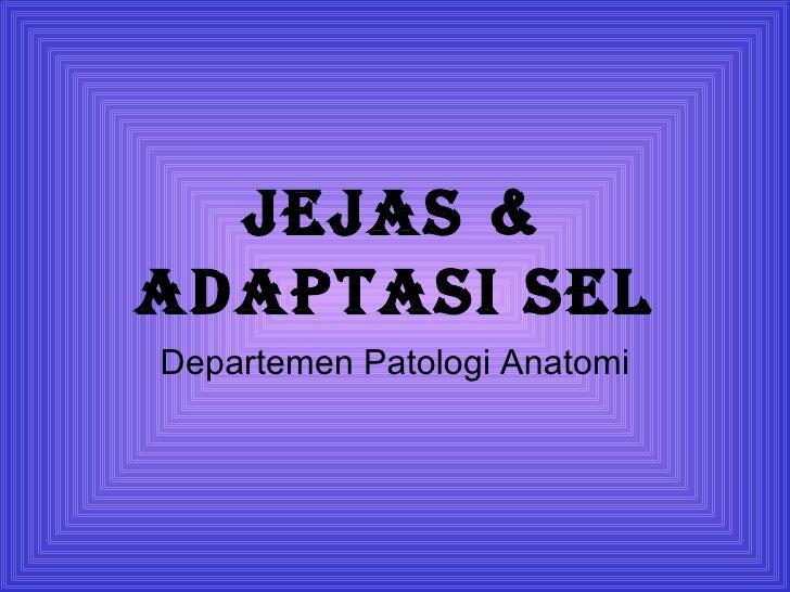JeJas &adaptasi selDepartemen Patologi Anatomi