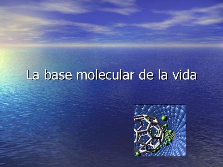 La base molecular de la vida